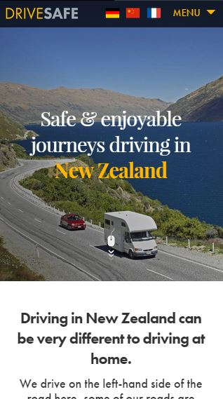 Helping the world DriveSafe in New Zealand (Cabbage Tree Creative)
