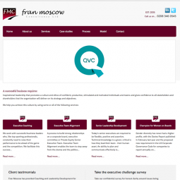 Fran Moscow Consultancy  2014-01-07