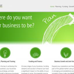 Synergie Business 2012-03-29