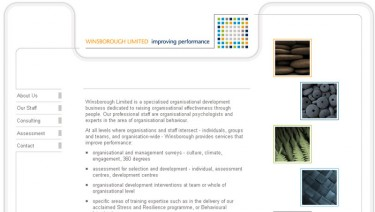 Winsborough ltd (a psychology consultancy firm)