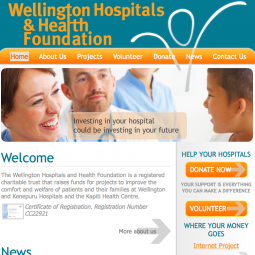 Wellington Hospitals and Health  2008-02-10