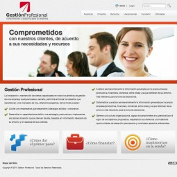 gestion profesional 2010-04-12